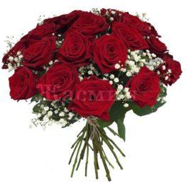 Розы с гипсафилой