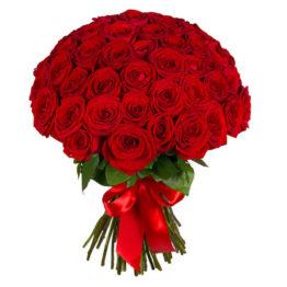 Красные Уральские розы