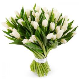 Охапка белых тюльпанов
